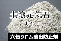 六価クロム溶出防止剤